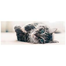 ARTEBENE Cat Message Card